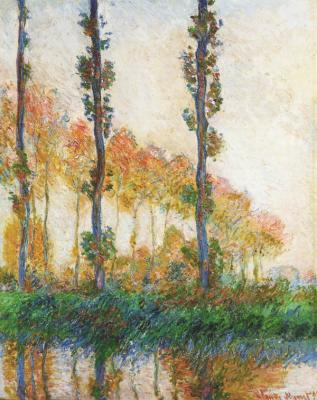 peuplier poplar serie monet