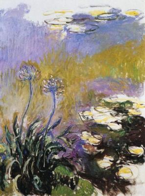 Agapanthus by monet