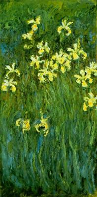 Yellow irises by monet