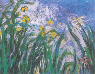 yellow and mauve irises by monet